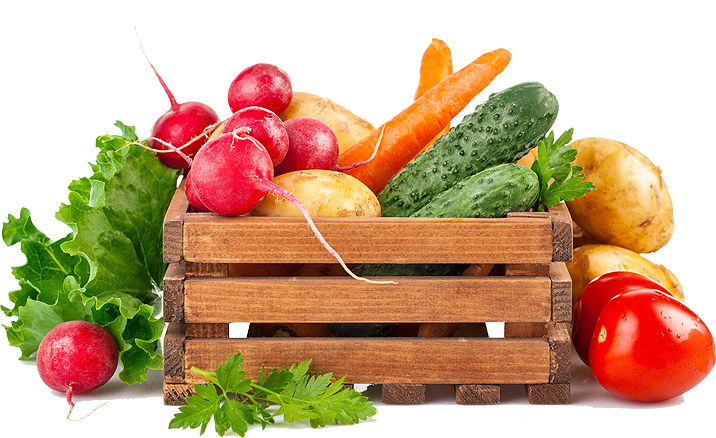 wholesale food suppliers