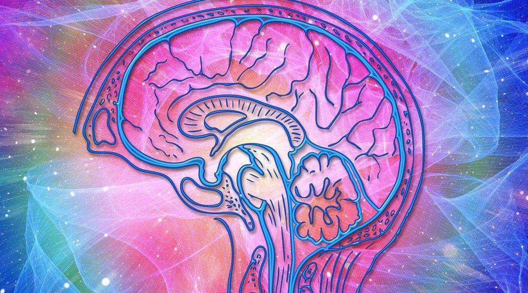brain health assessment amen